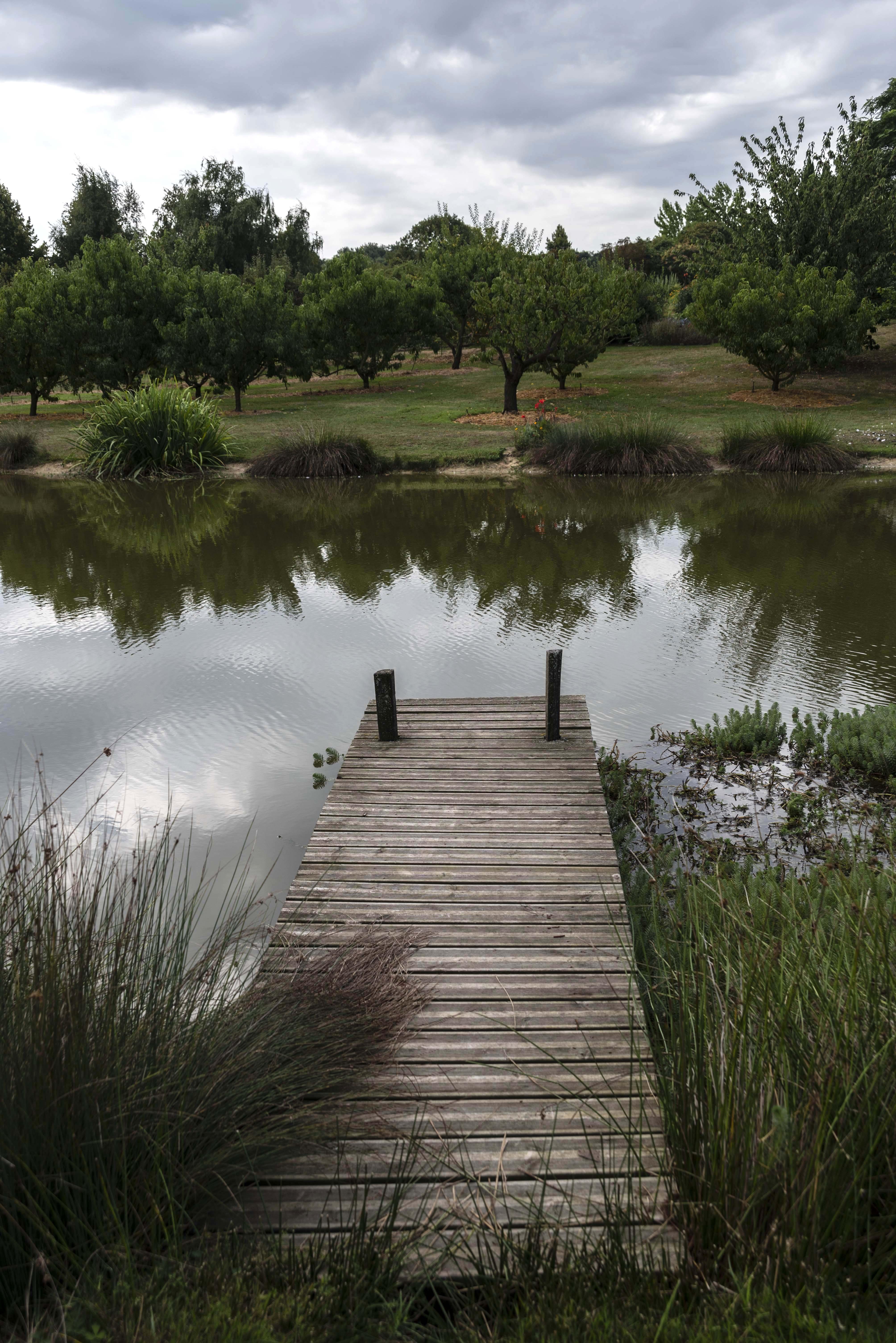 Occitanie-La-Romieu-jardin-coursiana